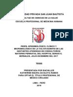 T-TPMC- Katherine Maura  Zavaleta Ramos.pdf