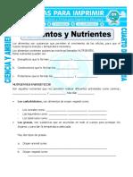 Ficha Alimentos y Nutrientes Para Cuarto de Primaria
