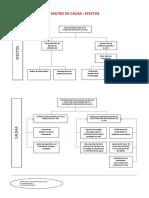 ARBOL DE CAUSA-EFECTOS-PROYECTO-v3.docx