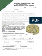 Diagnostica Español.docx