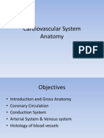 cardiovascularsystem-131213002153-phpapp02