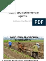 Tipuri Si Structuri Teritoriale Agricole