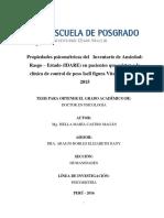 IDARE - ISELLACASTRO MAGAN.pdf