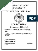 PIL project.docx