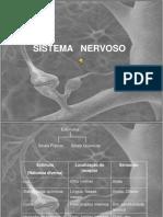 Apresentacao Sistema Nervoso