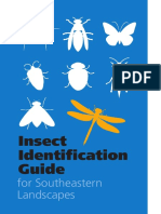 InsectID-Guide.pdf