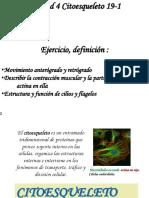CALENDARIO 19-1 UNIDAD 4.pdf