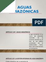 Aguas amazónicas.pptx