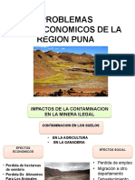 Problemas Socioeconomicos de La Region Puna