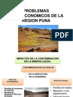 PROBLEMAS SOCIOECONOMICOS DE LA REGION PUNA.pptx