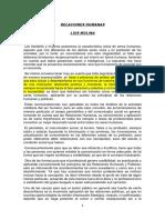 SEPARATA I. REL. HNS. LUIS MOLINA.docx