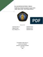 SKC prototype.docx