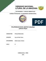 EXPOSICION MATICO.docx