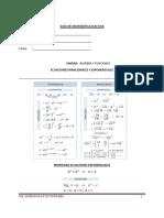 Guia Matematica Diferenciada I
