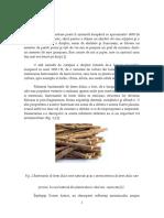 Albire Dentara.pdf