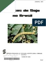 Insetos da soja-Brasil.pdf