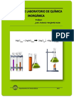 MANUAL LABORATORIO QUIMICA INORGANICA I-20158 (1).pdf