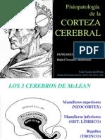 Corteza Cerebral Afasias