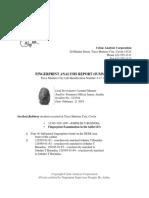 Crime Analysis Corporation.docx