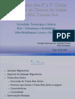 stc-ng6-dr4-101121063417-phpapp02 (1).pdf