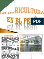 La Agricultura en El Peru 160325163218