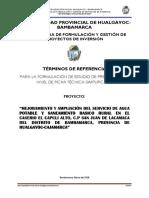 TDR AGUA Y SANEAMIENTO-CAPULI ALTO-SAN JUAN LACA.docx