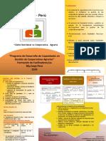 Convocatoria a Facilitadores- Información Del My.coop-Perú 2019