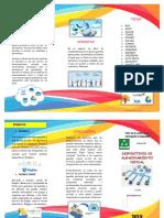 TRIPTICO - DISPOSITIVOS DE ALMACENAMIENTO VIRTUAL.docx