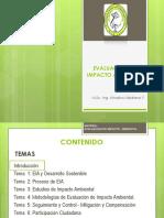 Introduccion LMA.pdf