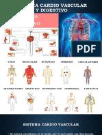 Sistema Cardio Vascular y Digestivo [Autoguardado]