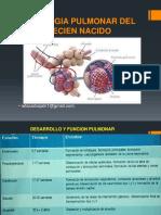 FISIOLOGIA PULMONAR DEL RECIEN NACIDO.pptx