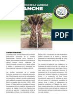 Avalanche_caracts-LR.pdf