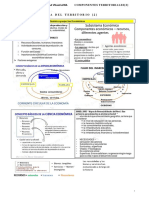 COMPONENTES TERRITORIALES[S3]-2019-convertido.docx