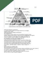 Piramide Life 120 e Dieta