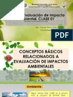 clase  1 Y 2 DE EIA.pdf
