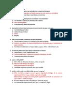 PREGUNTAS FROILAN.docx
