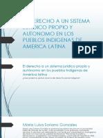 Derecho Indigena