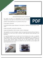 Expo rio Silao Guanajuato S