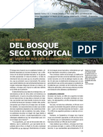 Resilencia del bosque seco tropical