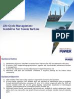 LCM Guideline for Steam Turbine