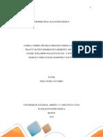 Trabajo final consolidado planeación estrategica (1).docx