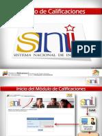 Carga de Calificaciones SNI