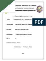 anaisis 04 imprimir.docx