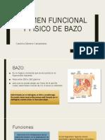 Examen Funcional y Físico de Bazo