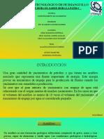 acuiferos expo.pptx