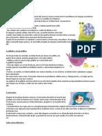 10 CUENTOS CORTOS.docx