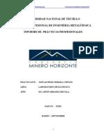 Informe de practicas profesionales Jose1.doc