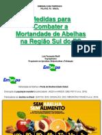 Medidas para Combater a Mortandade de Abelhas na Região Sul do RS