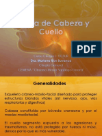 CIrugia Cabeza y Cuello.pdf