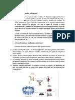 FONDOS COLECTIVOS.docx